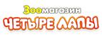 Логотоп Четыре лапы